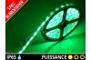 Ruban LED 3528 - Etanche IP65 - 12v - Vert