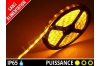 Ruban LED 3528 - Etanche IP65 - 12v - Jaune