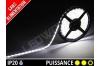 Ruban LED 2835 - 60 leds / m - 12v - Blanc Pur