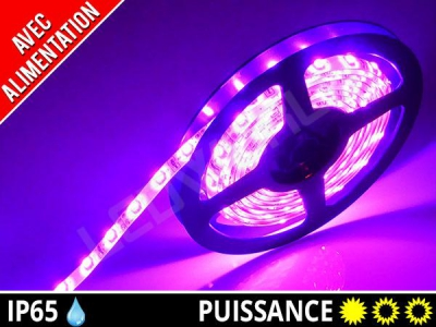Pack ruban LED 3528 + alimentation - Rose