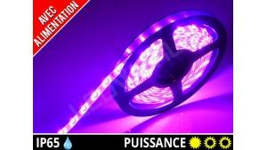 Pack Ruban LED 3528 avec alimentation - Etanche IP65 - 12v - Rose