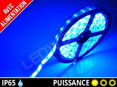 Pack ruban LED 3528 + alimentation - Bleu
