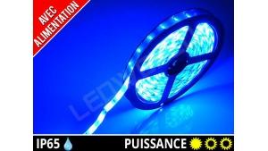Pack Ruban LED 3528 avec alimentation - Etanche IP65 - 12v - Bleu