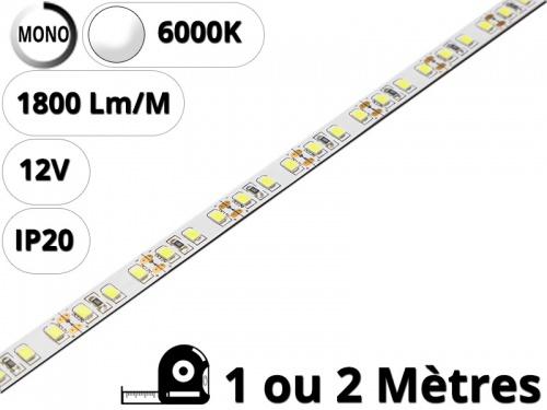 Ruban Bande led haute puissance pour profilé aluminium-Blanc pur 6000K - 12V
