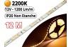 Ruban Led Pro Blanc Extra Chaud 2200K - 12 mètres-IP20