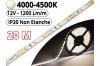 Ruban Led Pro Blanc Naturel 4500K - 20 mètres-IP20